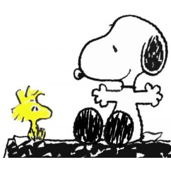 Snoopy e Woodstock 1