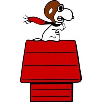 Snoopy sulla casetta