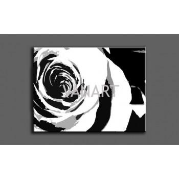 Quadro rosa nera