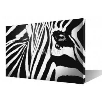Quadro zebra African Dream