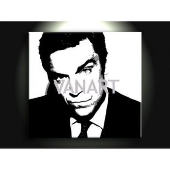 Quadro Robbie Williams